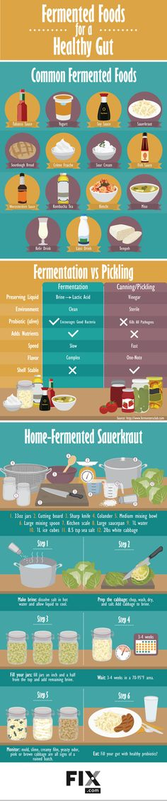 Fermented Foods for a Healthy Gut #Infographic #Food