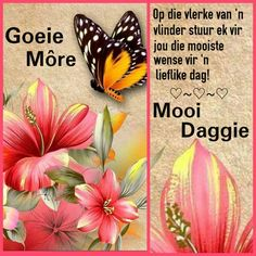 Monday Blessings, Afrikaanse Quotes, Goeie More, Birthday Wishes Quotes, Good Night Quotes, Good Morning Wishes, Advice, Sayings, Creative