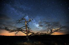 Lyrid Meteor and Milkyway Photo by Jeff Berkes -- National Geographic Your Shot