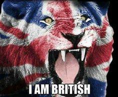 Uk Flag, Flag Art, British Memes, British History, Animal Muppet, Great Britain Flag, Patriotic Symbols, St Georges Day, Army Day