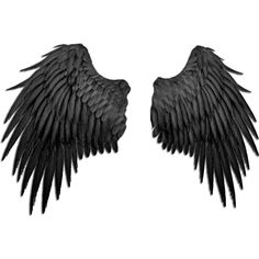 black_angel_wings_by_marioara08-d3b3rx5.png ❤ liked on Polyvore featuring wings, backgrounds, filler, extra, accessories, effect, borders, picture frame, quotes and saying