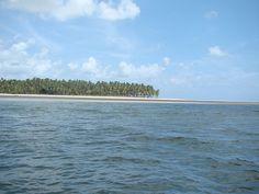 Praia de Carneiros - Passeio de barco