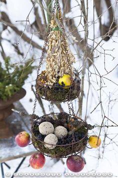 Trädgårdsflow: December Idée pour les oiseaux