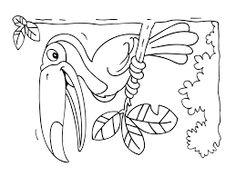 Výsledek obrázku pro omalovánky páv