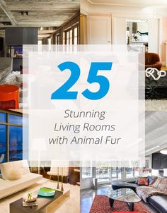 25 Stunning Living Rooms with Animal Fur