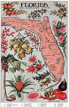 vintage fl map