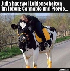 Julia has two passions in life: cannabis and horses - iFunny :) Silly Pictures, Best Funny Pictures, Cool Pictures, Animal Pictures, Cannabis, Morning Humor, Funny Morning, Animal Memes, Ganja