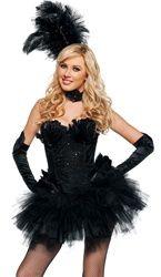 75 best birds of paradise costumes images  black swan
