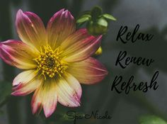 Come relax, renew and refresh at Spa Nicole Book now at SpaNicoleE.setmore.com