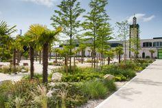 Les jardins de rocaille.  Commune de Mantes-la-Jolie – Epamsa – Osica – Mantes en Yvelines Habitat.  Compagniedupaysage