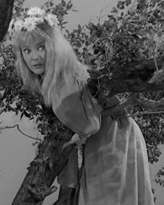 """Carolyn Jones as Ophelia Frump in """"The Addams Family"""" 1964. In a lovely tree."""