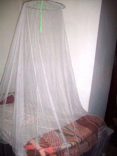 Not a princess canopy, a mosquito net used for protection during sleep.
