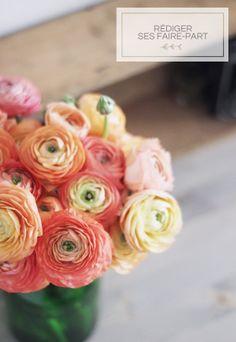 I need flower . Wedding Centerpieces, Wedding Bouquets, Wedding Flowers, Wedding Decorations, Wedding Dress, Love Flowers, Beautiful Flowers, Beautiful Things, Elegant Wedding