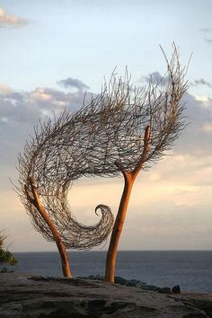 It seems like a wave and the curve is beautiful. It is relaxing but still creative. The lines of the tree trunk are complimenting the curve. The  wood texture is there. it looks like someone is holding a wave. it could be a symbolic sign for people who are not afraid of the sea.