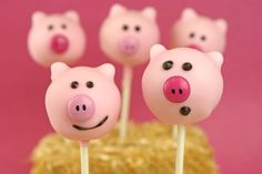 Animal Cake Pops {Cows, Pigs, Bears, and Bumble Bees}