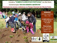 """Santa Maria vai """"Florestar Portugal"""""""