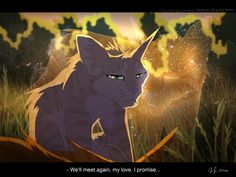 Warrior cats by Erin Hunter, art by Mizu-no-Akira. Firestars spirit and Sandstorm.awwwwwww the feels Warrior Cat Memes, Warrior Cats Series, Warrior Cats Fan Art, Warrior Cats Books, Warrior Cat Drawings, Cat Plants, Herding Cats, Love Warriors, Warriors Memes