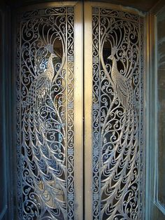 Incredibly beautiful doors somewhere in Chicago, Illinois.