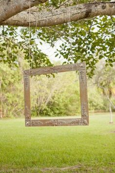 Hang it at your next outdoor event with a disposable camera near it. You may finally get some pictures of the family that will last a life time. Cute idea!! cool idea for family reuinion? Or wedding?