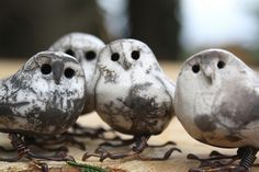 owl cluster by Joe lawrence