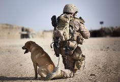 U.S. Marine Lance Cpl. Ken Bissonette, a dog handler with 4th Platoon, Kilo Company, 3rd Battalion, 3rd Marine Regiment, and 21-year-old native of Babbitt, Minn., scans a nearby road while halted with Chatter, his improvised explosive device detection dog, on a security patrol with Afghan National Police during the Garmsir district community council elections here, April 17, 2012.