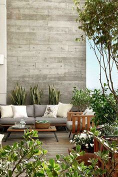 Exposed cement feature wall, this.. without all the greenery.
