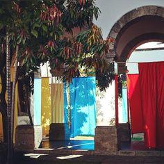 Daniel Buren es uno de los principales promotores de la democratización del arte. Visita ahora su obra en nuestro país en el @hospiciocabanas en Jalisco. Thanks Galería Hilario Galguera