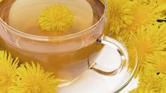 Traditionally, dandelion root tea is one of the most popular herbal remedies. The tea made using this plant is said to be a great tonic for a number of ailments. In this article, we will read more about this herbal tea. Dandelion Tea Benefits, Dandelion Root Tea, Dandelion Leaves, Dandelion Plant, Dandelion Flower, Chrysanthemum Flower, Lotus Flower, Combattre La Cellulite, Effects Of Drinking