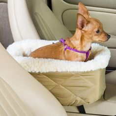 Snoozer Luxury Console Pet Car Seat at Brookstone—Buy Now! EVEN BETTER! Meant for poochie since she loves to sit right on the console!