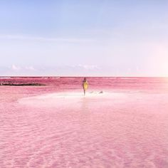 What color is a lagoon? In the tiny fishing village of Las Coloradas, located on the eastern coast of Mexico's Yucatán Peninsula, it's pink. This section of the peninsula's largest wetlands reserve—the Ría Lagartos Biosphere Reserve—is renowned for its striking rosé hues and its large, white salt banks that rise out of the earth like …