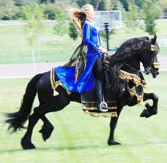 Friesians are Fairy-tale horses... ❤
