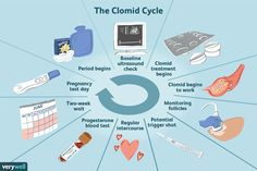 How do you take Clomid? What can you expect during treatment? Learn what it's like in this day by day, comprehensive guide to Clomid. Pcos Fertility, Clomid, Miracle Baby, Preparing For Baby, Trying To Conceive, Midwifery, Pregnancy Test, Blood Test