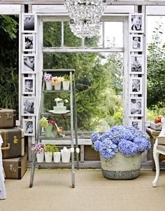 """""""A Greenhouse Goes Glam"""" via Country Living. Click through for a slideshow of more shots of this reinvented space. I love the look of the photos and the hydrangeas here, though it's supposed to be featuring the ladder."""