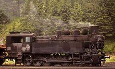 Abandoned Train, Train Car, Steam Locomotive, Train Station, Transformers, Model, Display Stands, Trains, Europe