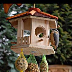 Bird feeder Gazebo