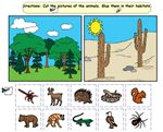 Habitat Sort – A cut and paste activity in which students identify and sort animals found in desert and forest habitats.