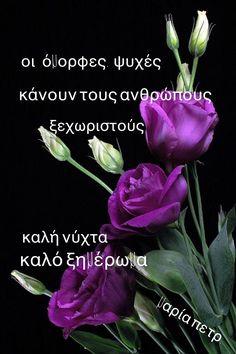 Good Night, Plants, Frienship Quotes, Nighty Night, Plant, Good Night Wishes, Planets