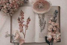 Find images and videos about pink, flowers and aesthetic on We Heart It - the app to get lost in what you love. Princess Aesthetic, Pink Aesthetic, La Reverie, The Wicked The Divine, Lily Evans, Photo D Art, No Rain, Land Scape, Fairy Tales
