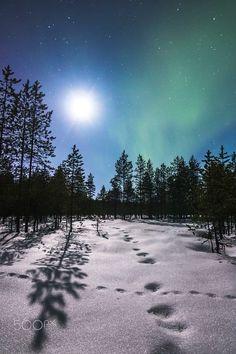 Moonlit night (Finland) by Mikko Karjalainen on 500px