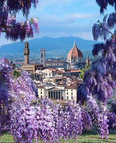 Florence, Italy Love it there