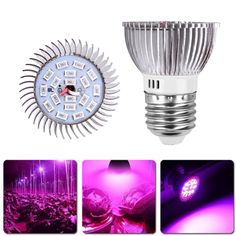 Full Spectrum cfl LED Grow Light Lampada E27 E14 MR16 GU10 Indoor Plant Lamp Flowering Hydroponics System IR UV Garden 110V 220V  Price: 8.99 & FREE Shipping #computers #shopping #electronics #home #garden #LED #mobiles #rc #security #toys #bargain #coolstuff |#headphones #bluetooth #gifts #xmas #happybirthday #fun