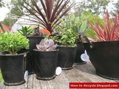 . . . . . How to Recycle: Old Tires as a Flower Pots