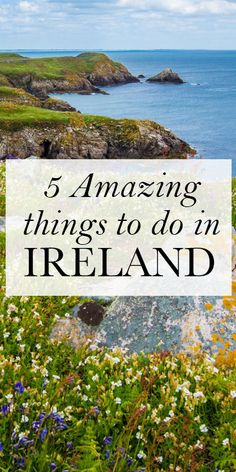I love Ireland... but how on earth to do you figure out what to do in this…