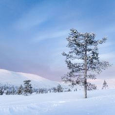 89 Finland Ideas In 2021 Finland Finnish Language Scenery