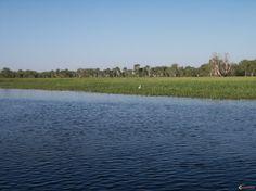 Balade en bateau sur South alligator river à Yellow Water.