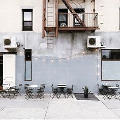 Sel Rrose, New York.