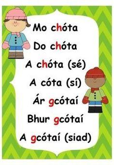 An Aidiacht Shealbhach (Gaeilge) mo, do. Irish Gaelic Language, 5th Class, Irish Landscape, Learning Resources, Classroom, Teaching, School, Poster, Maths