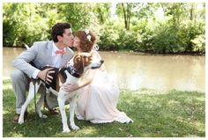 Spotlight On: Two Paws Up- How to Include Your Beloved Pooch In Your Wedding » Heart of Frederick   Mary Kate McKenna Photography