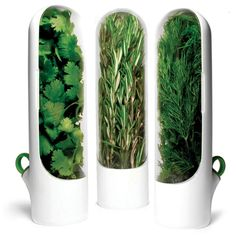 Prepara Herb-Savor Mini Pods Fits inside a typical refrigerator door while providing roomy herb storage capacity Herb stems sit slightly submerged in the water of the water-well, keeping them fresh BPA free and top rack dishwasher safe Kitchen Tools, Kitchen Gadgets, Kitchen Dining, Kitchen Products, Kitchen Items, Kitchen Stuff, Kitchen Inventions, Smart Kitchen, Kitchen Things