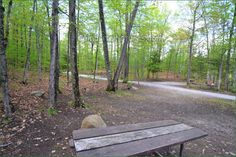 Sharbot Lake Provincial Park, Camping in Ontario Parks Ontario Parks, Campsite, Picture Video, Outdoor Decor, Plants, Pictures, Photos, Camping, Plant